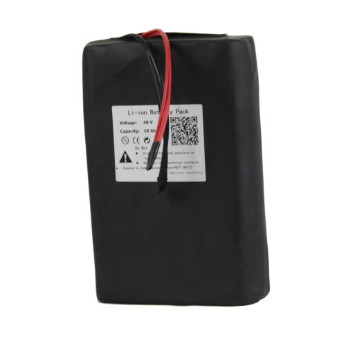 BtrPower 48V18Ah Lithium Li-ion Battery Pack for 500W ebike with charger BMS