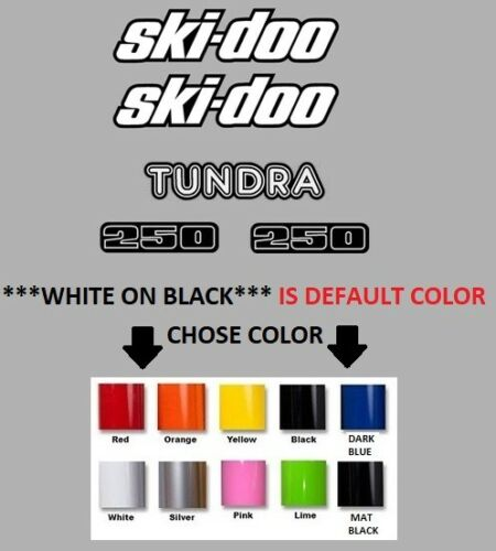 #665 SKIDOO BOMBARDIER TUNDRA 250 HOOD CAB AND SIDE STICKER DECAL