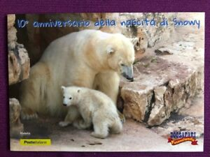 FOLDER-2016-10-ANNIVERSARIO-DELL-039-ORSETTO-SNOWY-ALLO-ZOO-SAFARI-DI-FASANO