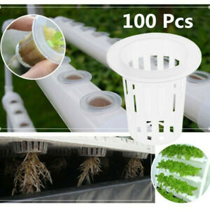 100X Vegetable Net Cup Slotted Mesh Soilless Culture Vegetables Pots Hydroponic