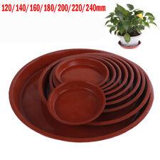 5 x Sankey Plastique Fleur Grow Saucer 11.5 cm-GN053