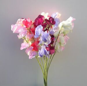 Artificial silk flowers 12 sweet peas stems in mixed colours ebay image is loading artificial silk flowers 12 sweet peas stems in mightylinksfo Gallery