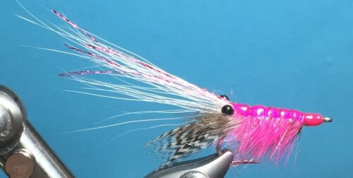 """Garnele Shrimp pink  /""""lively/"""" Meerforelle Hornhecht Seehecht"""