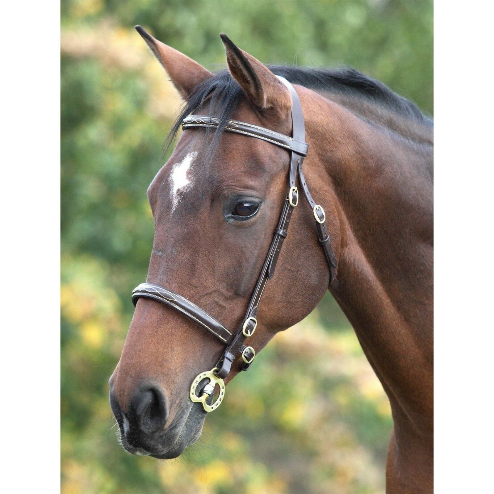 SHIRES  BLENHEIM FANCY STITCHED IN HAND BRIDLE FULL  SIZE HAVANA  preferential