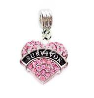 Breast Cancer Awareness Survivor Pink Slide Charm Necklace European Bracelet Diy