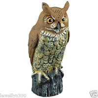 Great Horned Owl Decoy Bird & Rodent Repellent