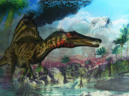 3D Lenticular Poster 3 images in 1 Dinosaurs 12x16 Print Prehistoric