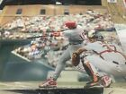 Darren Daulton Signed 16X20 PHILADELPHIA PHILLIES Photo PSA/DNA Quick Opinion