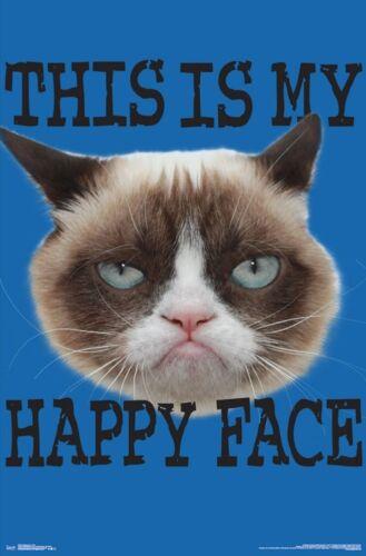 FUNNY 15884 HAPPY FACE POSTER 22x34 GRUMPY CAT