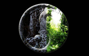 Framed-Print-Forest-Yin-Yang-Picture-Poster-Oriental-Japanese-Chinese-Art