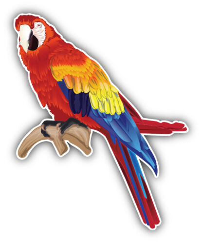 /'/'SIZES/'/' Macaw Parrot Car Bumper Sticker Decal