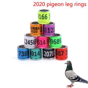 Blue Pigeon Plastic Dehumidification Breeding Eggs Basin Nest Bowl   SG