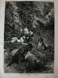 Jagd-Jagdhunde-034-Ein-treuer-Hueter-der-Strecke-034-Holzstich-n-Bellecroix-1884