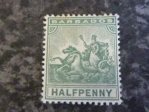 BARBADOS-POSTAGE-STAMP-SG136-HALF-PENNY-GREEN-LIGHTLY-MOUNTED-MINT