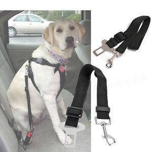 haustier hunde auto sicherheitsgurt anschnallgurt anschnaller verstellbar neu. Black Bedroom Furniture Sets. Home Design Ideas
