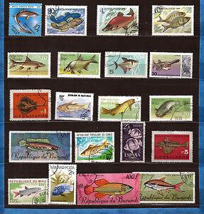 Todos-los-paises-Peces-Peces-de-mar-todas-las-especies-de-mar-28m-502