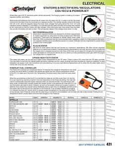 ElectroSport Industries ESG919 Stator For 2005 Aprilia RSV 1000 R Factory