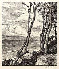 GEORG JAHN - MEERESSTRAND - WINDFLÜCHTER - Lithografie 1901