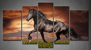 Image Is Loading Black Horse Wall Art Painting Picture Canvas Animal