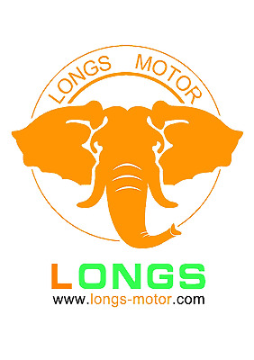 Changzhou Longs Motor Co Ltd