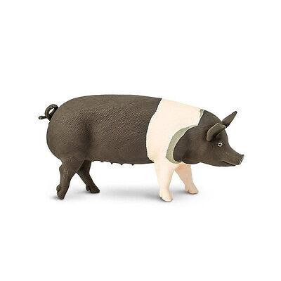 HAMPSHIRE PIG Replica 161829 ~ NEW for 2017! ~ FREE SHIP/USA w/ $25+SAFARI,Ltd.