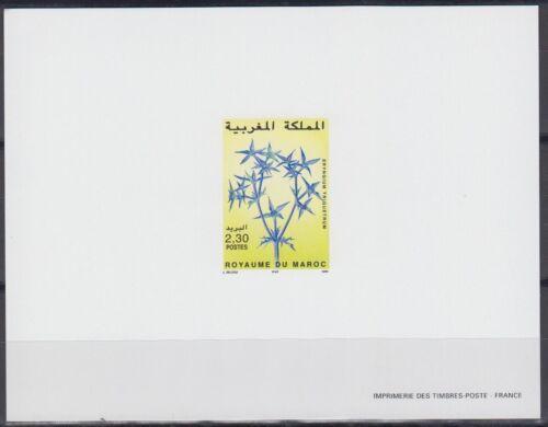 Morocco Sc852 Flower, Eryngium Triquetrum, Deluxe Proof