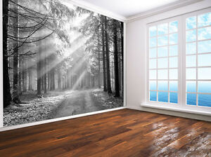 Forest Nature Landscape Photo Wallpaper Wall Mural 7199901 Black