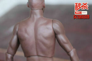 ZC Toys 12inch S002 Muscular Male PVC Action Figure Body