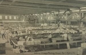 Vintage-1910-Interior-Orange-Packing-House-Fort-Myers-Florida-Postcard