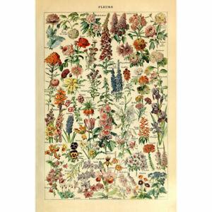Matte-Retro-Polyester-Print-Floral-Garden-Flowers-Botanical-Home-Art-Decor-Wrap