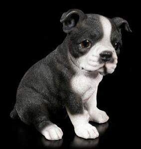 Hunde Welpen Figur - Boston Terrier - Deko niedlicher Hundestatue süßer Welpe