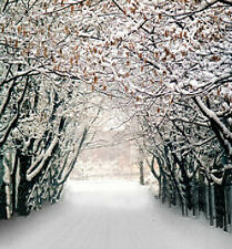 Winter Forest Vinyl Photography Studio Prop Backdrops Wedding Backgrounds 5x7ft