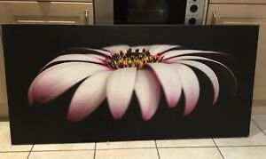 Large-Canvas-Picture