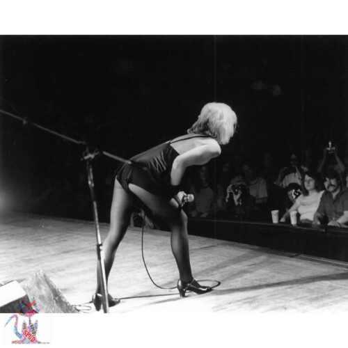 "Debbie Harry Blondie Photograph 10/""x8/""  #30800"
