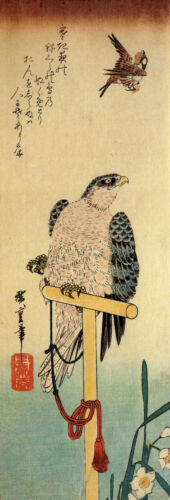 Tied Falcon eyeing a Sparrow Reproduction Woodblock Print by Hiroshige
