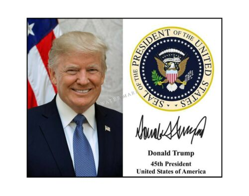Donald Trump 8x10 photo presidential seal signature autographed president 2020