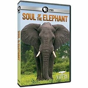 NATURE-SOUL-OF-THE-ELEPHANT-NATURE-SOUL-OF-THE-ELEPHANT-DVD-NEW