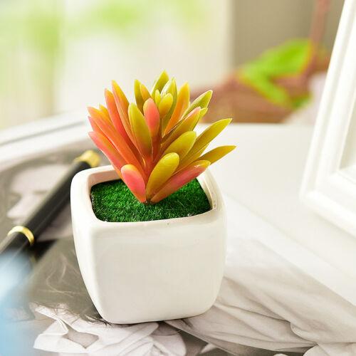 Home Garden Office Small Green Succulent Artificial Plants Ceramic Pot Decor Hot