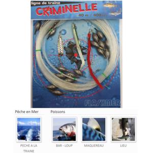 LIGNE DE TRAINE  CRIMINELLE     CRIMINAL  TRAIN LINE - 400G 800G - FLASHMER