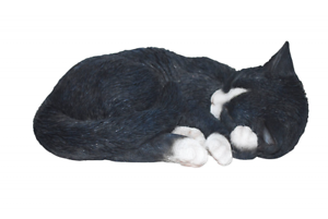 Black// White Vivid Arts Size B Real Life Sleeping Cat