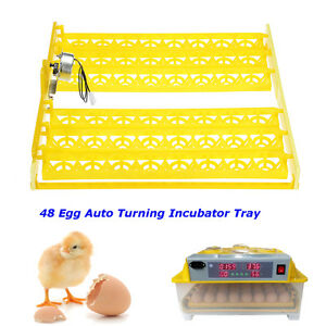 48 Digital Egg Incubator Hatcher Automatic Egg Turning Tray Temperature Control