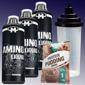 10-33-Ltr-Mammut-Aminoliquid-3-x-1000ml-Amino-Liquid-Shaker-20g-Pudding