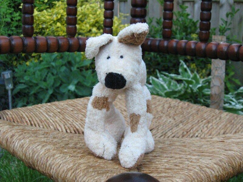 Baby sicher hund plsch glcklich pferd holland 2001