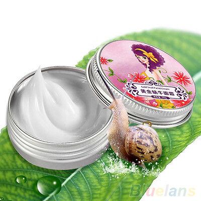 Women's Skin Care Moisturizing Whitening Anti Wrinkle Snail Facial Cream