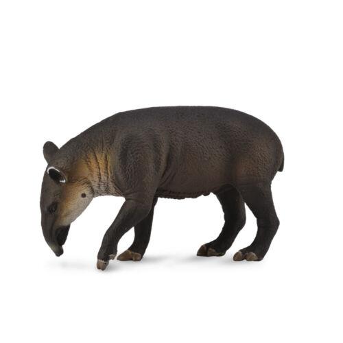 Tapir de Baird CollectA