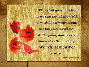 Metal sign a4 size remembrance poem poppy inspirational wall door image is loading metal sign a4 size remembrance poem poppy inspirational mightylinksfo