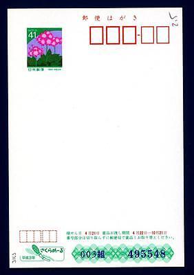 Giappone y - 1991 Japan - Fiori Intero Post Saluti Di Stagione 41