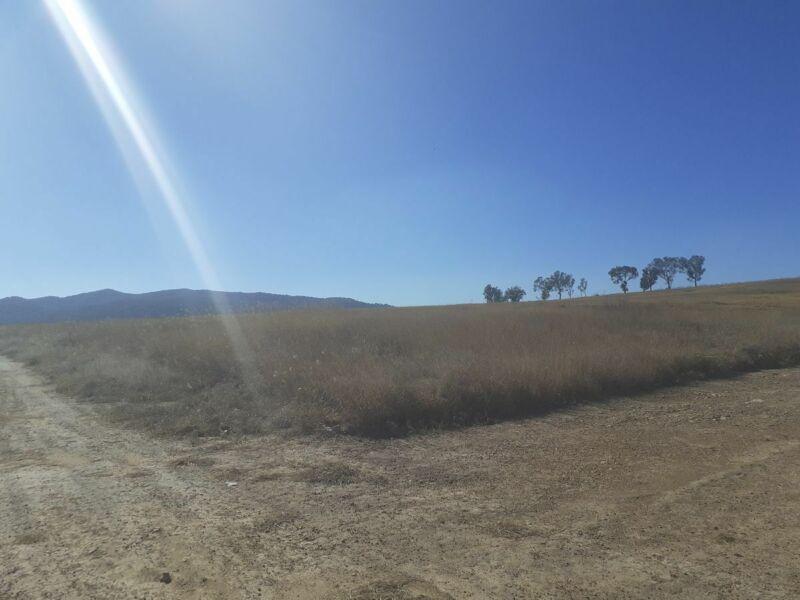 Terrenos de  13m x 31m en carretera a Colotlán