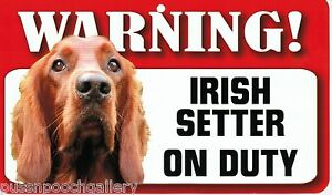 "Warning ""Irish Setter"" on Duty-Laminated Cardboard Dog Breed Sign"