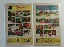 Tarzan Sunday Strips Lot of 13